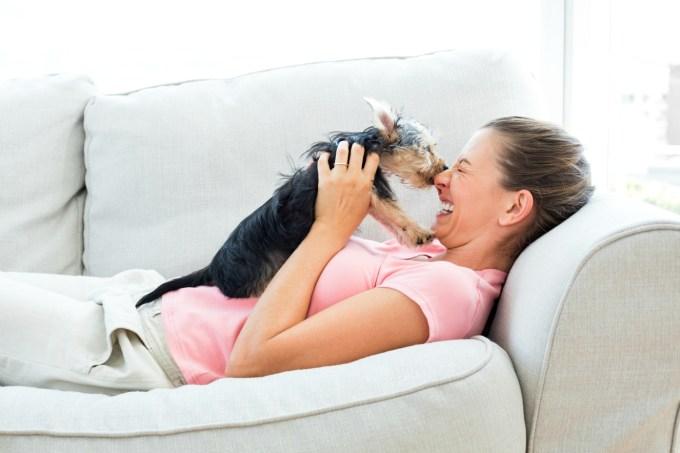 Cachorro brincando com mulher