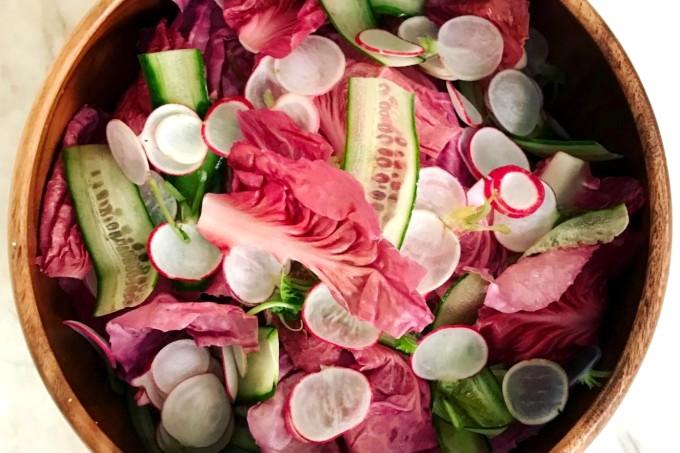 salada radicchio rosa