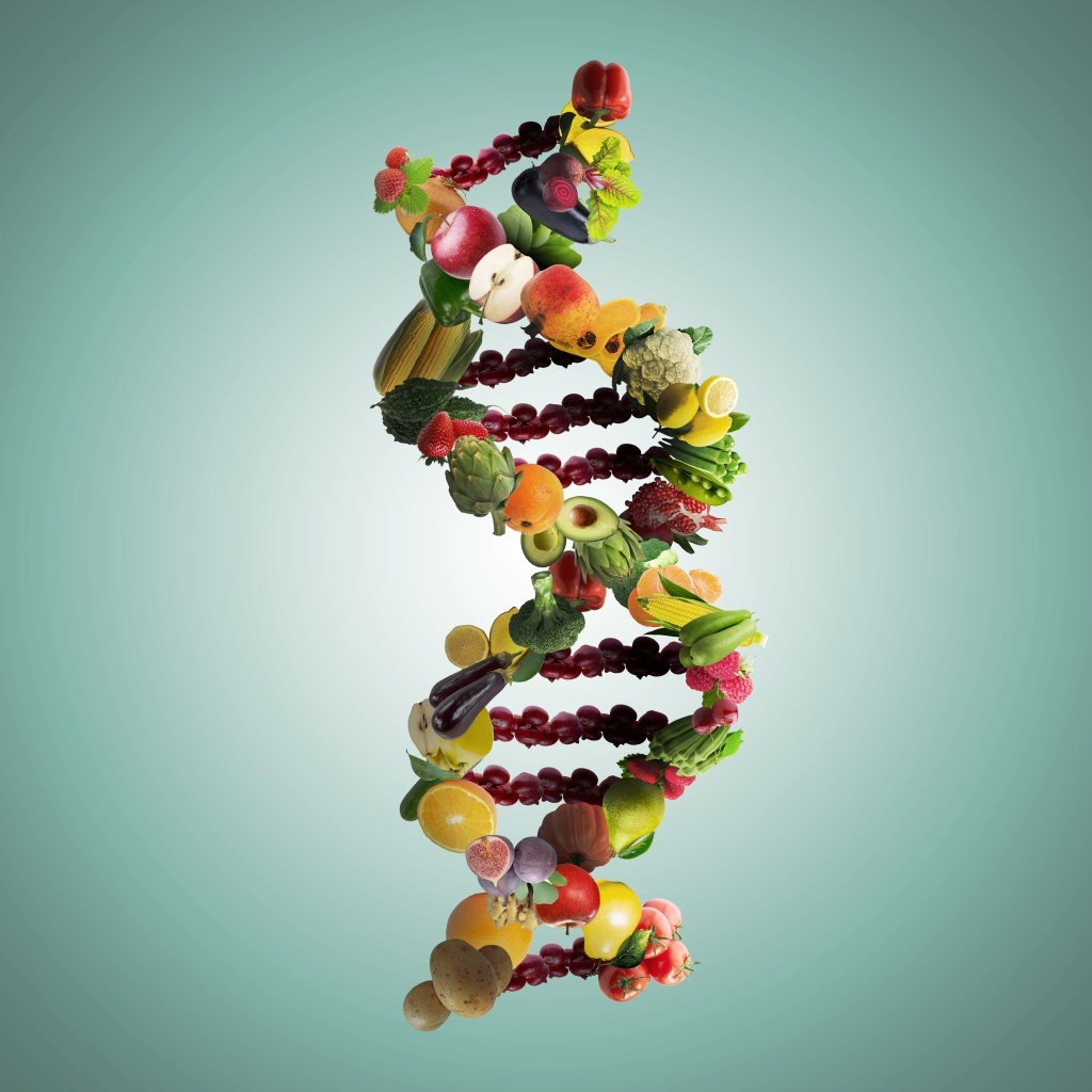 fita de DNA montada com alimentos diversos